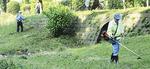 地域住民が協力して草刈りを行う