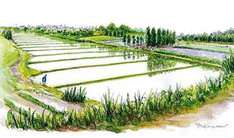 河南さんの作品「田植えの頃」