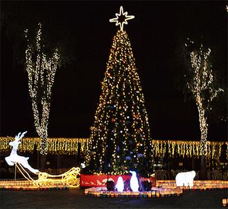 イルミネーションに彩られたクリスマスツリー