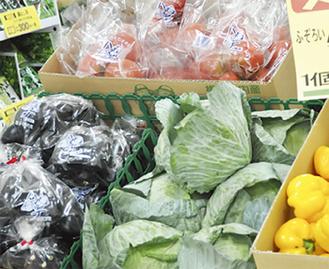 新鮮な夏野菜が店頭に