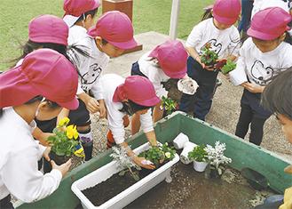 丁寧に花を植える園児たち
