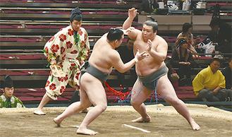 勢いのある相撲を見せる先場所の濱豊(右)