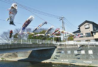 川の上に掲揚された鯉のぼり