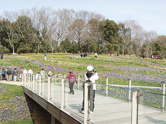 昨年開催された、緑化フェア期間中の里山ガーデン