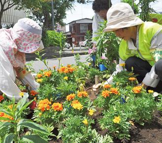 丁寧に花を植える参加者ら
