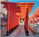 旧東海道を巡る