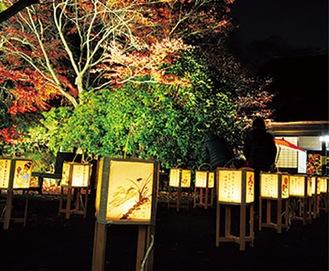 手作りの灯篭が公園を彩る※写真は過去の様子