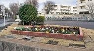 地域住民が花壇を一新