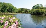 新緑のこども自然公園