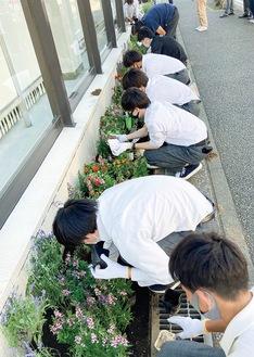花を植える生徒たち