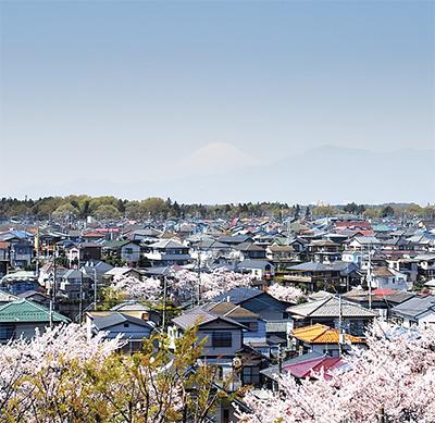 富士山と地区を一望
