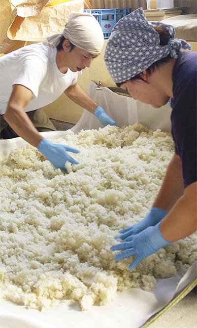 瀬谷米で味噌作り