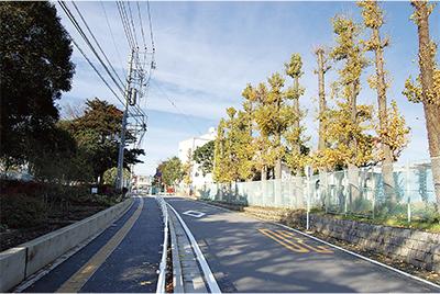 官公庁街、文京区域、多彩な顔をもつ第四地区