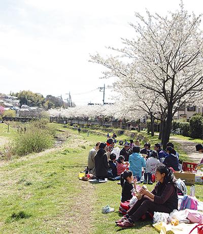 生き物の宝庫 和泉川