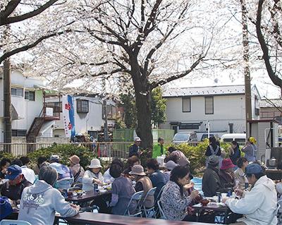 満開の桜の下で舌鼓