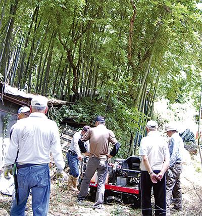 設立記念日に竹林整備