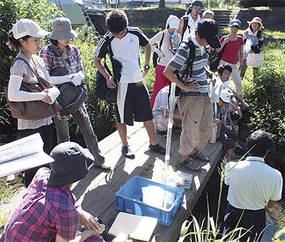和泉川の自然を学ぶ