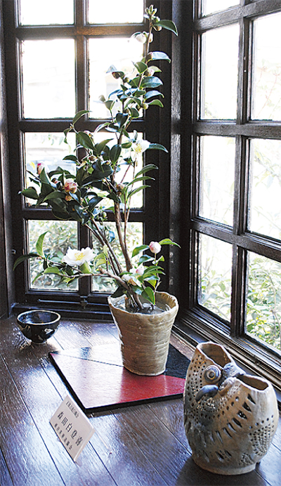 陶器・花・食のコラボ