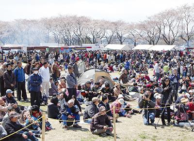 恒例の桜祭り開催