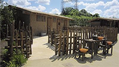 「アフリカのサバンナ」あす公開