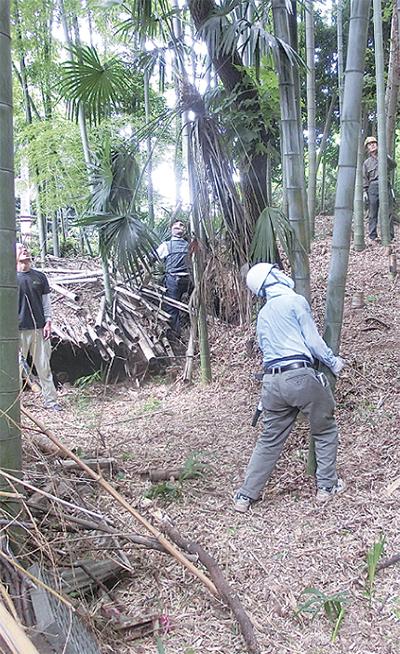竹林整備で地域貢献