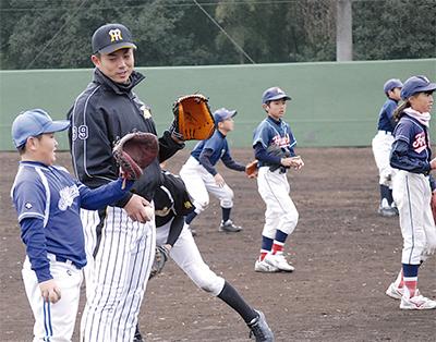 神奈川県高校野球 夏の県予選大会第2シードの 野球 …