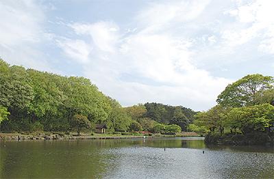公園で森林浴楽しむ