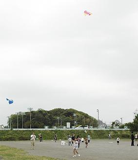 凧揚げを楽しむ参加者たち
