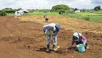 耕作地を整備するメンバー