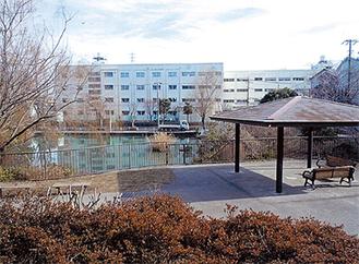 谷矢部池公園