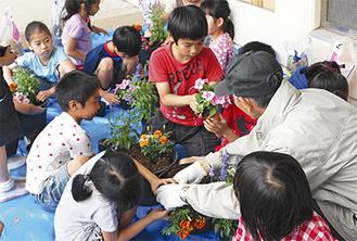 鉢植え作業を行う児童ら