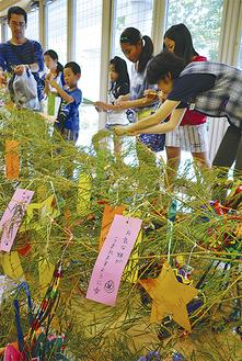 子どもたちの手で短冊などが飾り付けられた笹