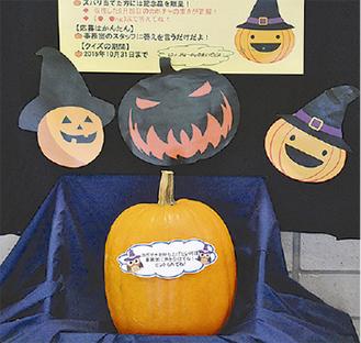 展示されているかぼちゃ