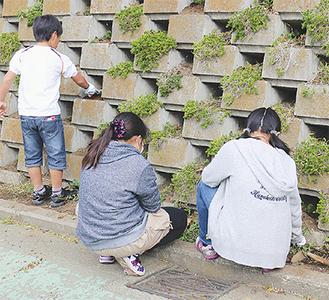 作業に集中する児童