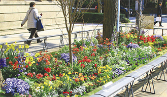 「みなとガーデン」の日本大通りにある花壇