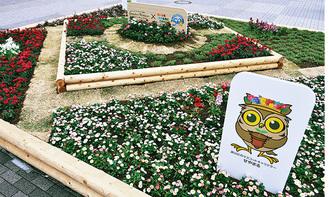 瀬谷駅北口にある大花壇
