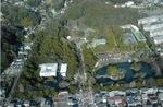 鶴岡八幡宮(2010年1月)
