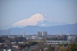 弥生台交差点付近、住宅街の高台から眺める富士山