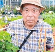 野菜苗売り場を増設