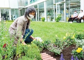 庭の手入れ中のボランティア