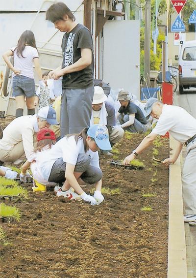 小学生が芝生植樹