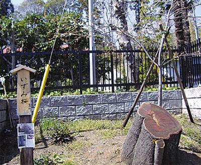 下飯田〜密蔵院