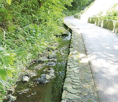 弥生台駅北口からの清涼散歩