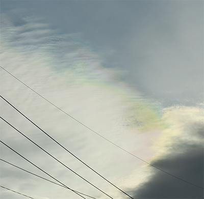 区内から「彩雲(さいうん)」