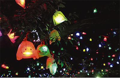 一夜限りのイルミ点灯