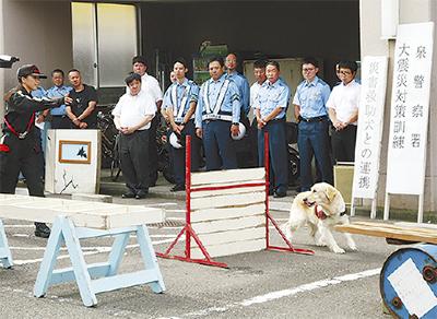 災害救助犬と防災訓練