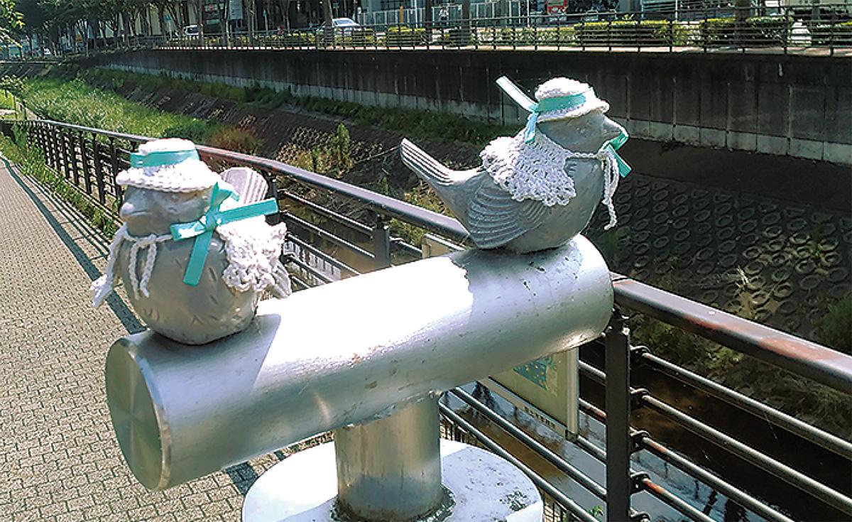 猛暑で鳥も夏仕様