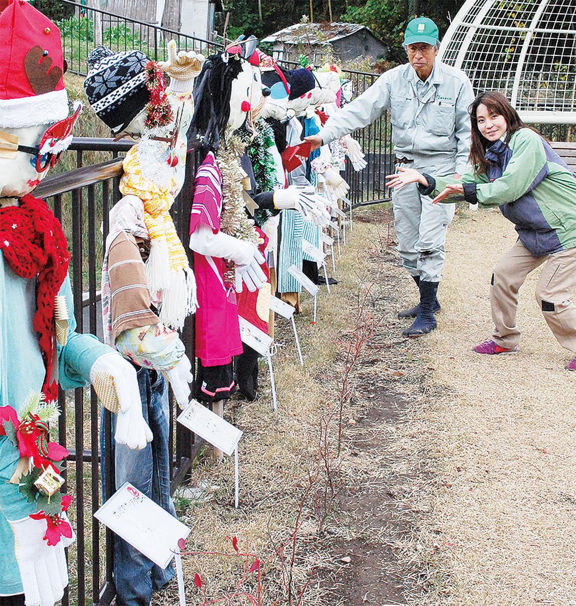 かかし総選挙開催中