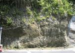 高松寺駐車場で見られる地層(提供:戸塚図書館)