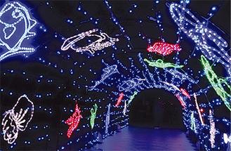 光のトンネルも目玉の一つ